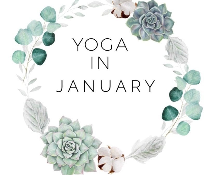 New Year, New Yoga Schedule – SUSPENDED